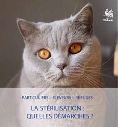 Campagne d'identification, d'enregistrement et de stérilisation des chats domestiques 2018