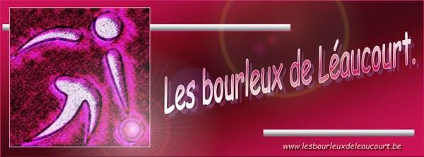 logo bourleux